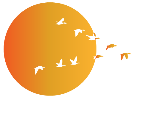 ippo-whitetext@3x